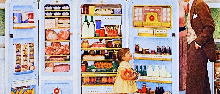 refrigerator repair, appliance repair, a same day appliance repair